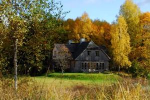 Schrei des Kranichs - Herbst