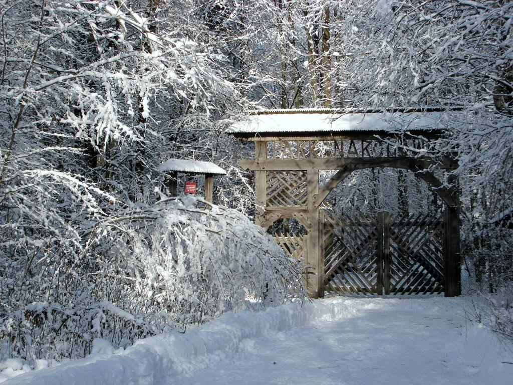 Das Tor zum Urwald